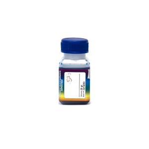 Чернила OCP CL 77 цвет Cyan Light для Epson QuickDry принтеров объём 25 грамм